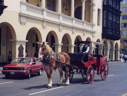 リマ市庁舎前の馬車